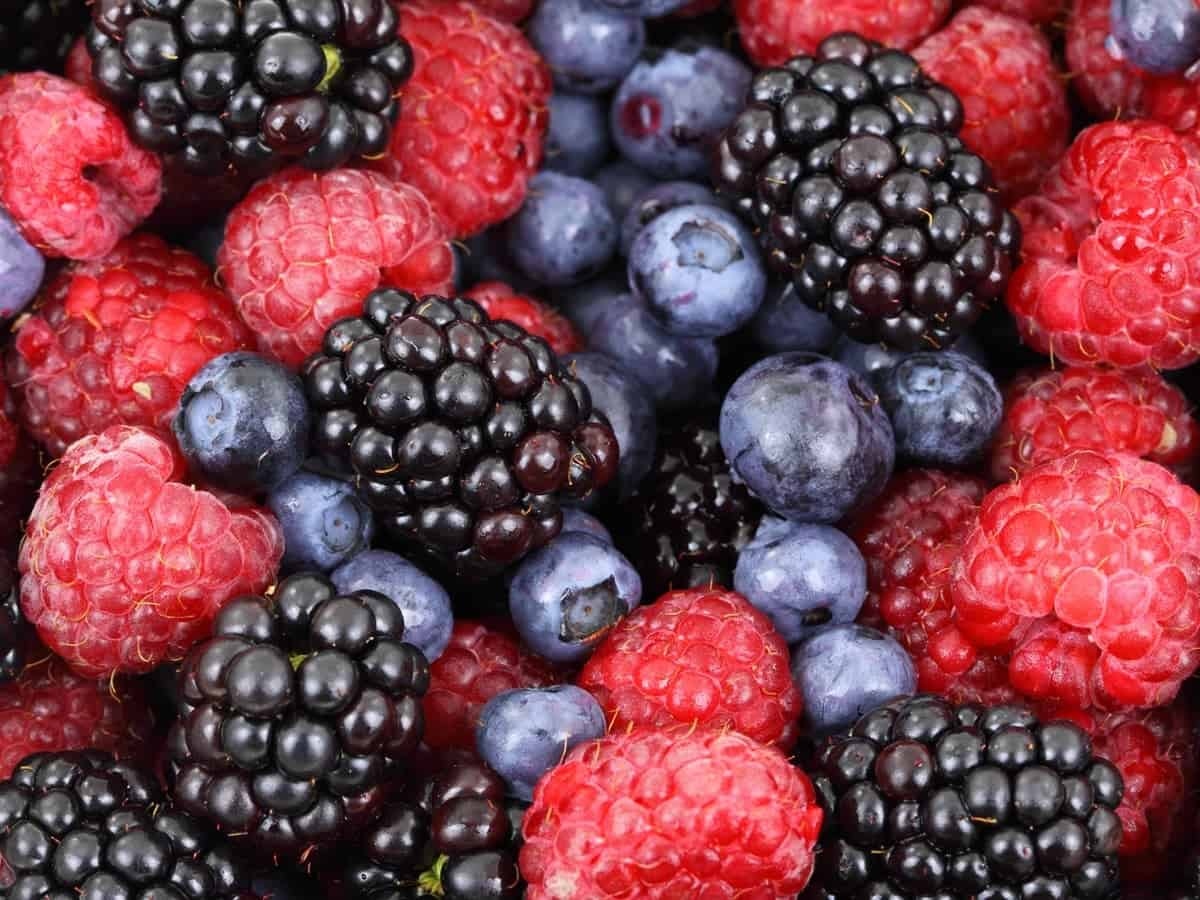Different types of berries in a bowl