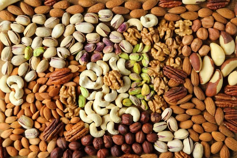A look at various types of nuts.