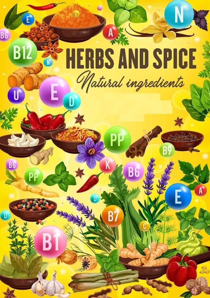 An illustrative chart depicting the health benefits of herbs and spices.