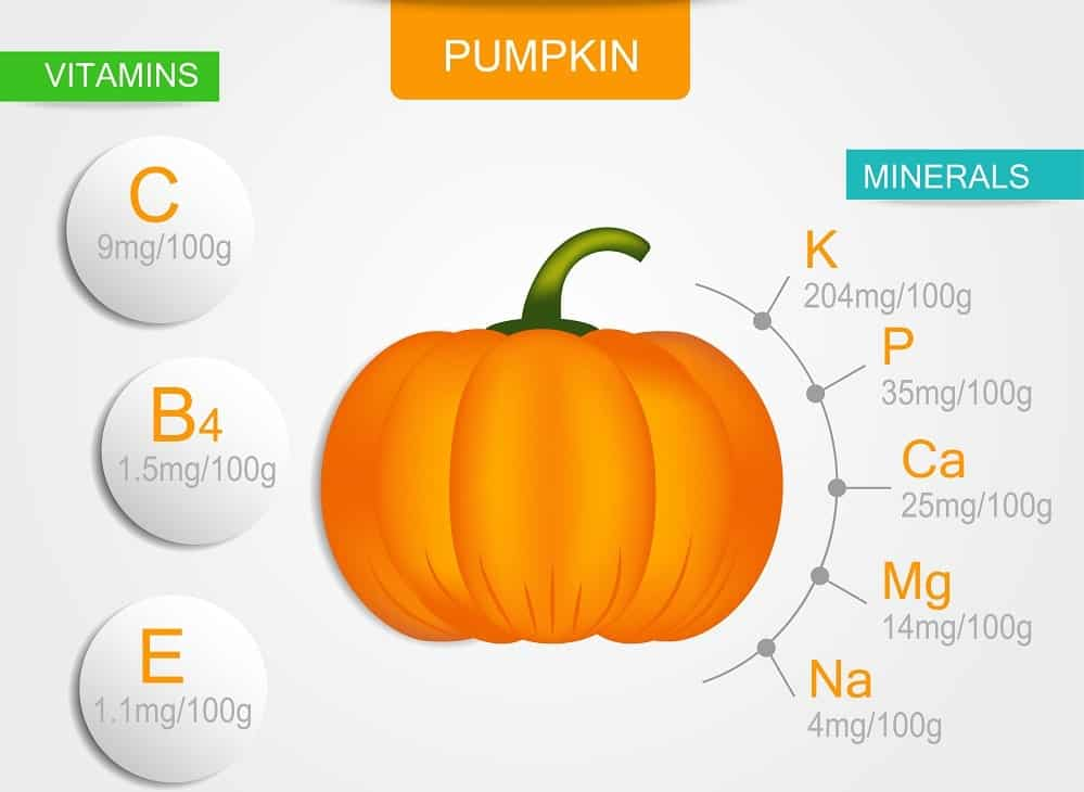 An illustrative chart depicting the nutritional content of pumpkin.